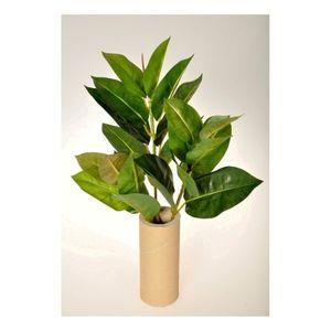 Umelá kvetina Ficus Elastica, 45 cm vyobraziť