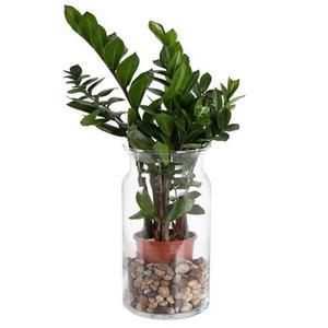 DUIF Sklenená váza BOSE 29, 5cm vyobraziť