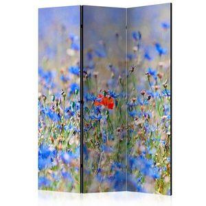 Paraván A sky-colored meadow - cornflowers Dekorhome 135x172 cm (3-dielny) vyobraziť