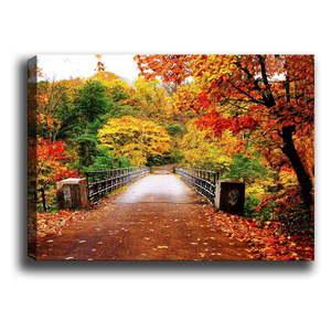 Obraz Autumn vyobraziť
