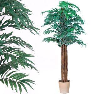 palmový list vyobraziť